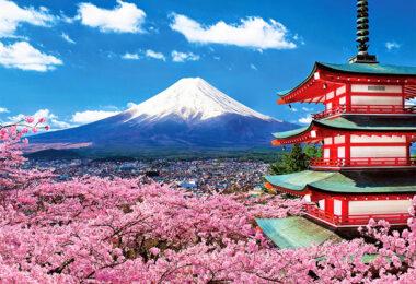 Dạy kèm tiếng Nhật tại nhà ở Bình Dương