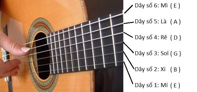 Cần gia sư dạy đàn Guitar tại quận 1